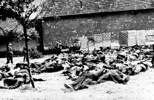 Mrtví lidičtí muži na zahradě Horákova statku 10.6.1942